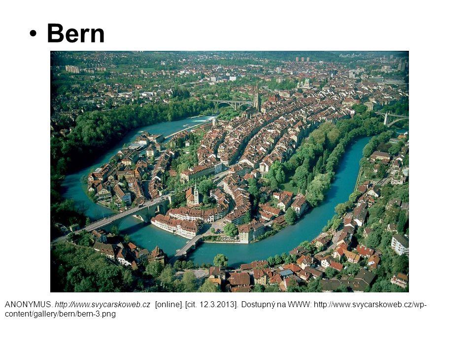 Bern ANONYMUS. http://www.svycarskoweb.cz [online].